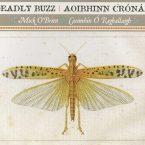 Mick O'Brien & Caoimhin O'Raghallaigh: Deadly Buzz