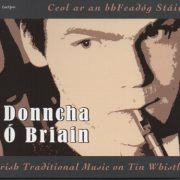 Donncha O'Briain: Irish Traditional Music on Tin Whistle